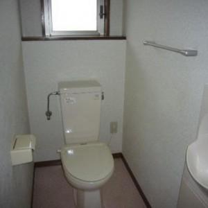 手洗い場付きの広めのトイレ