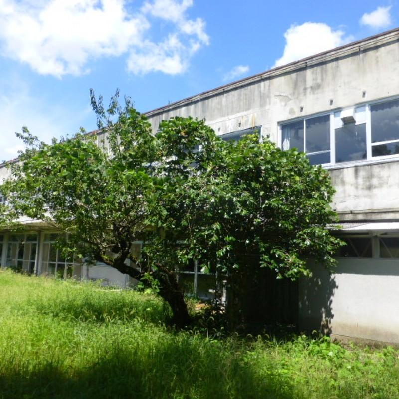 ①建物(宿泊施設跡)