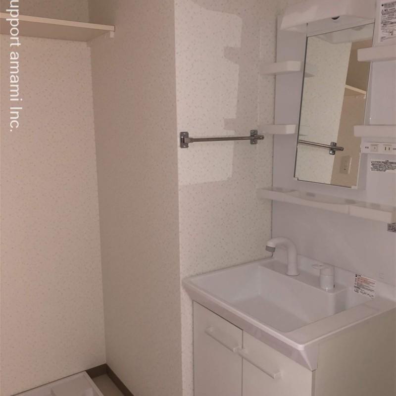 洗面脱衣室、室内洗濯機置場