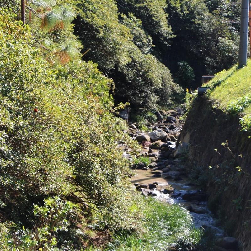 お家の前には川が流れ、安らぎを与えてくれます。