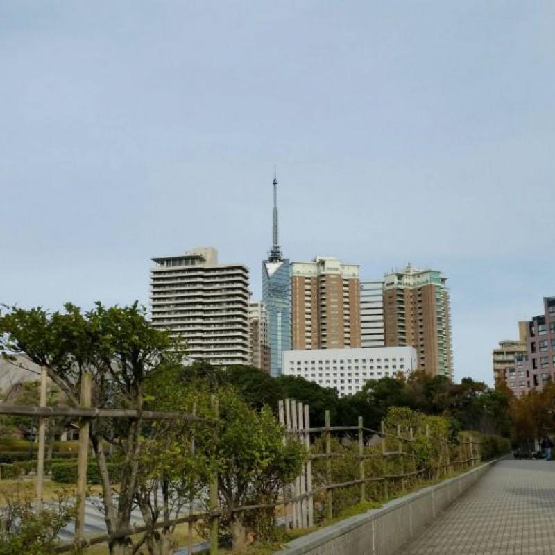 博物館や図書館すぐ近く☆福岡タワーも♪
