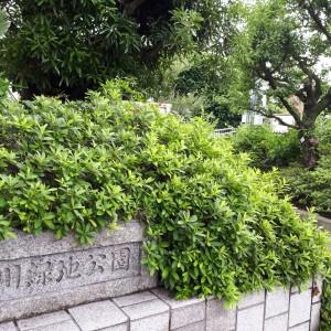 野川緑地公園