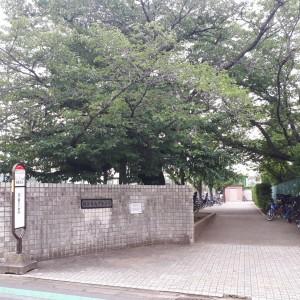 狛江市民グラウンド多目的運動広場